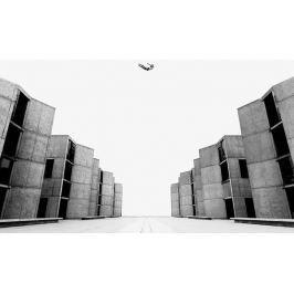 Barrows : Obsidion / Limited Edition LP