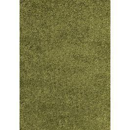 Kusový koberec Dream Shaggy 4000 green, 200 x 290 cm-SLEVA