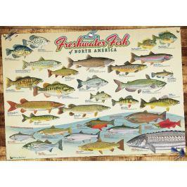 COBBLE HILL Puzzle  57193 Ryby Severní Ameriky 1000 dílků