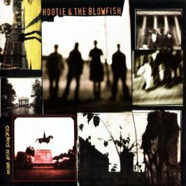 Hootie & The Blowfish : Cracked Rear View LP