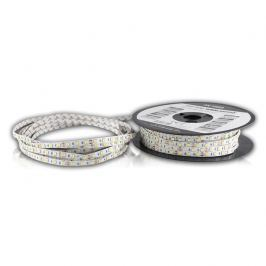 WHITENERGY WE LED páska 50m SMD5050 14.4W/m 10mm studená bílá