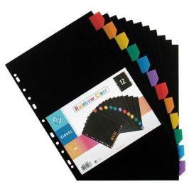 VIQUEL Rozlišovače, černá, plastové, A4 Maxi, 12 listů,
