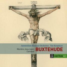 CD Buxtehude : Membra Jesu Nostri/Cantatas