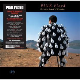 Pink Floyd : Delicate Sound Of Thunder LP