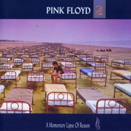 Pink Floyd : A Momentary Lapse Of Reason  LP