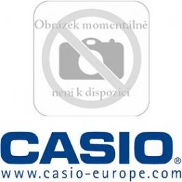 Casio DT 923 LI BATERIE