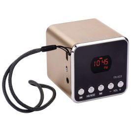 EMOS emGo TR533B soundbox - rádio, MP3, USB, microSD přehrávač, Bluetooth, zlatá