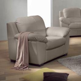 Tempo Kondela Kožená sedačka, Kůže pampas hellgrau M9010, DANILO