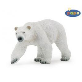 Ivana Kohoutová Medvěd lední velký