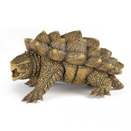 Ivana Kohoutová Alligator želví