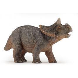 Ivana Kohoutová Triceratops mládě