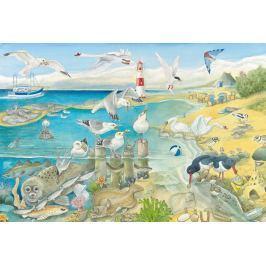 SCHMIDT Puzzle Pobřežní zvířata 60 dílků