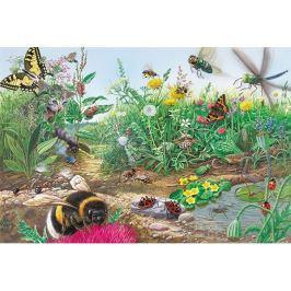 SCHMIDT Puzzle Svět hmyzu 200 dílků