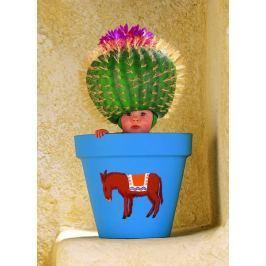 SCHMIDT Puzzle  57946 Kaktusový květináč 1000 dílků