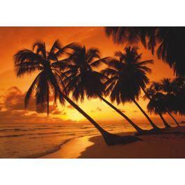 SCHMIDT Puzzle  500 dílků - Tropický západ slunce
