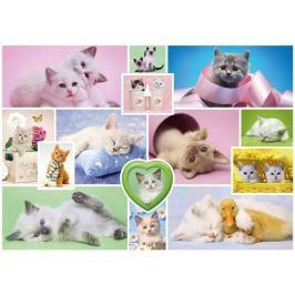 SCHMIDT Puzzle  1000 dílků - Přítulné kočky