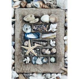 SCHMIDT Puzzle  58298 Poklady oceánu 500 dílků