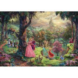 SCHMIDT Puzzle  59474 Šípková Růženka 1000 dílků