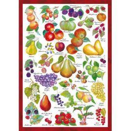 SCHMIDT Puzzle  59569 Ovoce 1000 dílků