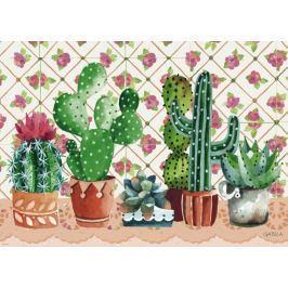 HEYE Puzzle Rodina kaktusů 1000 dílků