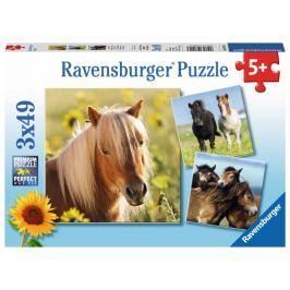 RAVENSBURGER Dětské puzzle  08011 Poníci 3x49 dílků