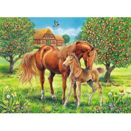 RAVENSBURGER Dětské puzzle  100 dílků - Koně na pastvině XXL