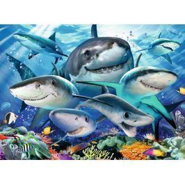 RAVENSBURGER Puzzle Usmívající se žraloci XXL 300 dílků