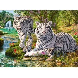 RAVENSBURGER Puzzle Rodina bílých tygrů 500 dílků