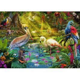 RAVENSBURGER Puzzle Ptačí ráj 1000 dílků