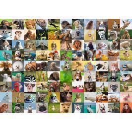 RAVENSBURGER Puzzle 99 vtipných zvířecích portrétů 1000 dílků