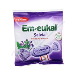DR C SOLDAN Em-Eukal Šalvějové dropsy s vit.C bez cukru 50g