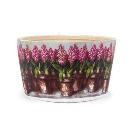 VETRO-PLUS Obal na květiny kulatý Hyacint