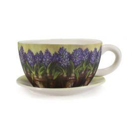 VETRO-PLUS obal na květiny Jumbo Hyacint