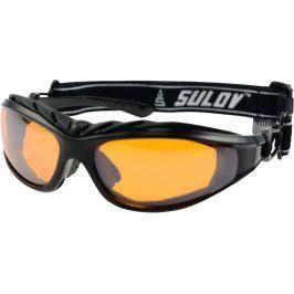Sulov Zimní sportovní brýle  ADULT II, černý lesk