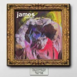 CD James : Justhipper-The Complete Sire & Blanco Y Negro Recordings 1986-1988