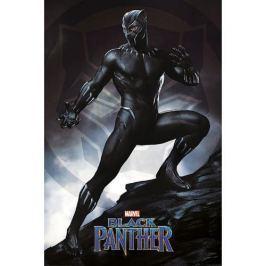 Black Panther - Stance, plakát Plakát