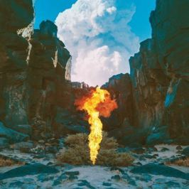CD Bonobo : Migration