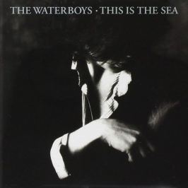 CD Waterboys : This Is The Sea 2