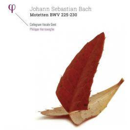 Bach-herreweghe - Motteten Bwv225-230 LP