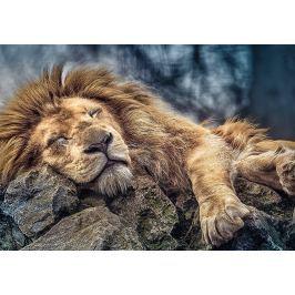 TREFL Puzzle  10447 Spící lev 1000 dílků