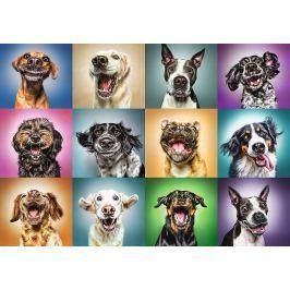 TREFL Puzzle Veselé psí portréty 1000 dílků