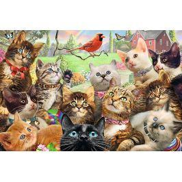 TREFL Puzzle Koťátka 260 dílků