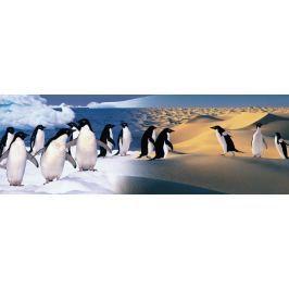 ZDEKO / TREFL Panoramatické puzzle ZDEKO 1000 dílků - Šťastní tučňáci