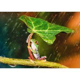 TREFL Puzzle Zelený deštník 500 dílků