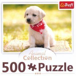 TREFL Puzzle  91475 Štěně s šátkem 500 dílků