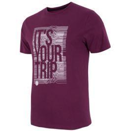 Pánské tričko 4F TSM012 Dark Violet, XXL