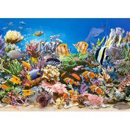 CASTORLAND Dětské puzzle  260 dílků - Barvy oceánu