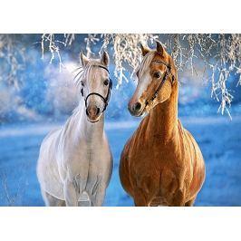 CASTORLAND Dětské puzzle  Koně v zimní krajině 260 dílků