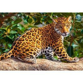 CASTORLAND Dětské puzzle  260 dílků - Malý jaguár