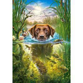 CASTORLAND Puzzle Plavající psík 500 dílků